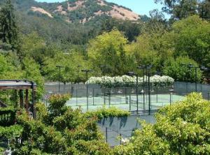 My tennis club