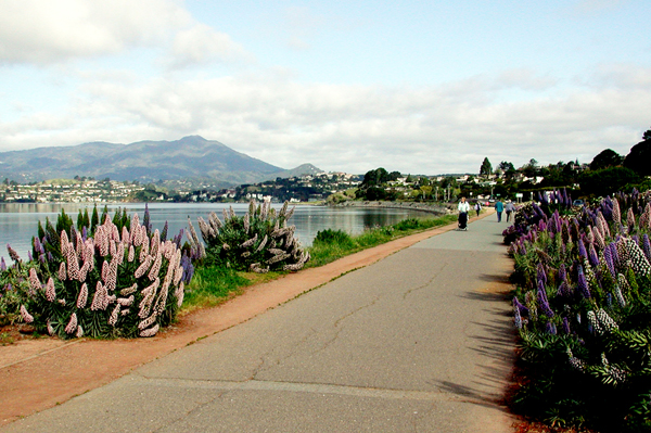 Tiburon bike path
