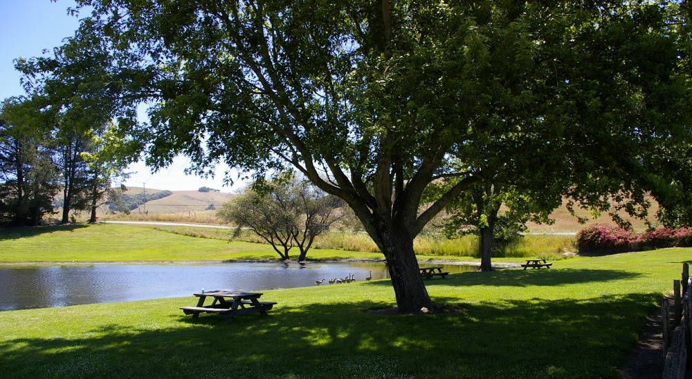 Picnic grounds at the Cheese Factory