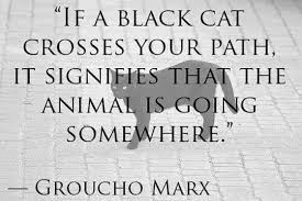 blackcat quote
