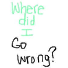 where did I go wrong