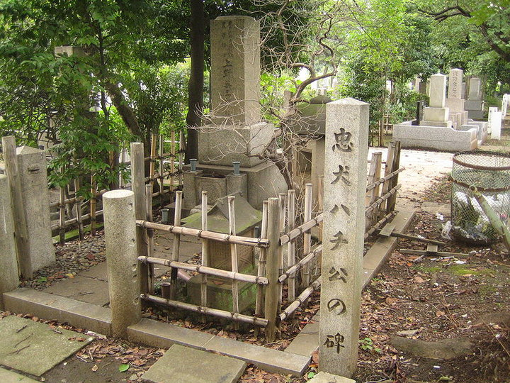 Hachiko's_grave_in_the_Aoyama_cemetery,_Minatoku,_Tokyo,_Japan