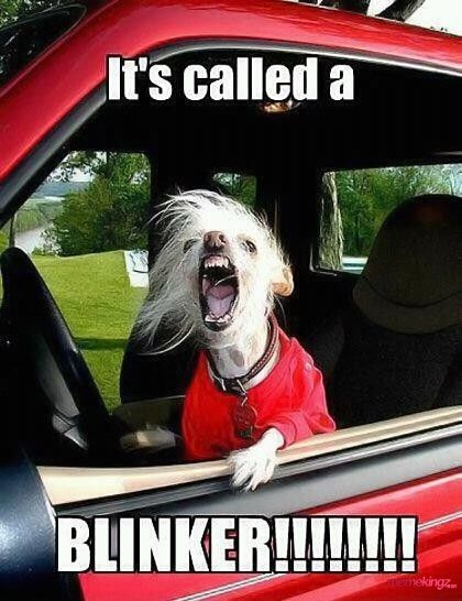 its-called-a-blinker