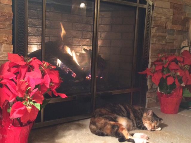 tippi-fireplace-2