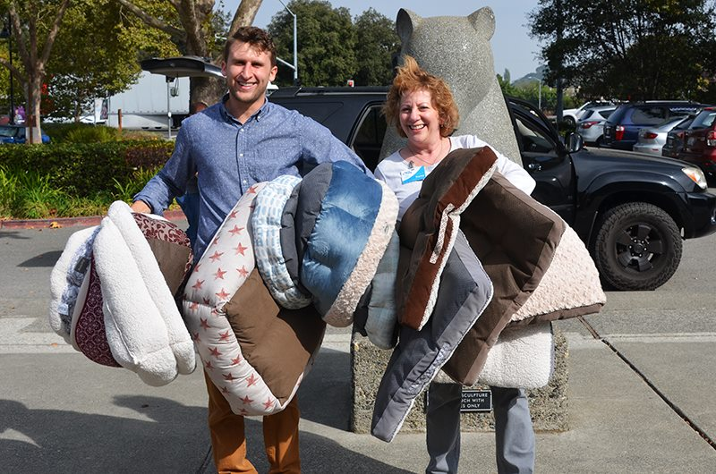 marin humane bed donations