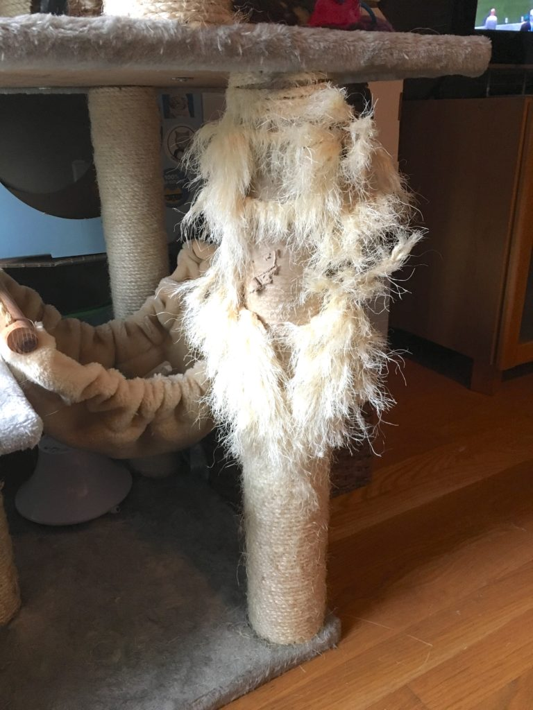 cat tree scratched up