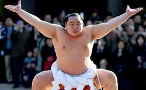 sumo wrestler2