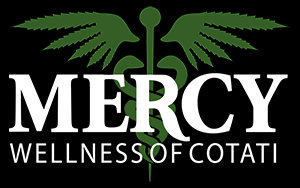 mercy wellness2