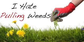 hate pulling weeds